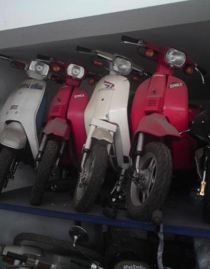 Honda SA 50 …